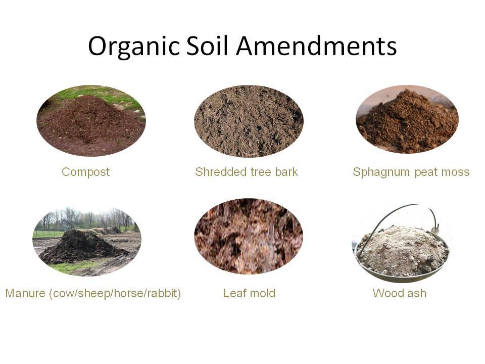 Time for some soil amendments gardening austin for Organic soil solutions